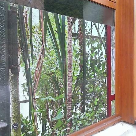 adhésif microperforé vitrine